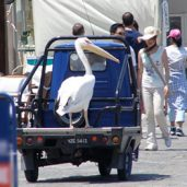 transport mykonos